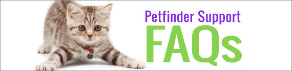 Petfinder Support FAQs