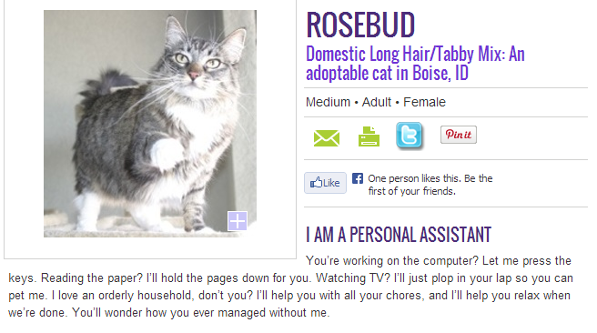 Rosebud's description