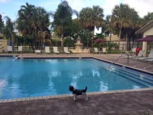 Molly in Miami!