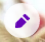 edit icon is tilted pencil in circle