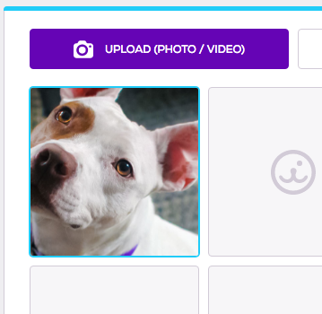 Photo and Video editor, drag and drop photo file into image place holder