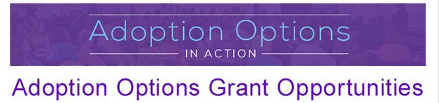 Adoption Options In Action Grants
