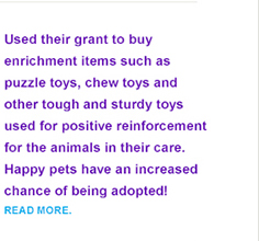 Adoption Options In Action Grants enrichment grant story