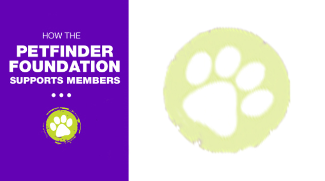 Petfinder shelter rescue group member account login Petfinder Foundation