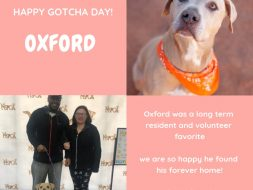 Nevada SPCA Purina New Year New Home Grant Oxford