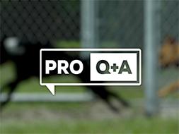 Play Group Q&A