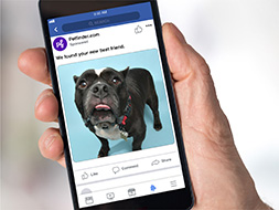 9 Steps to Creating Effective Facebook Ads